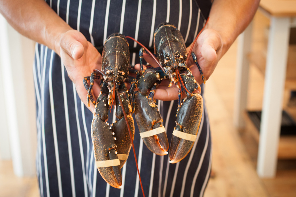 Yorkshire Seafood Cookery at The Malton Cookery School