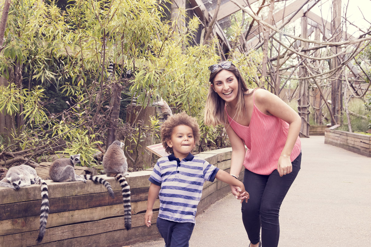 Visit to ZSL London Zoo - Two Adults and One Child