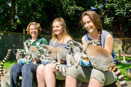 Animal Encounter at Flamingo Land Theme Park and Zoo for One