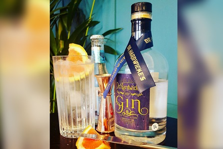 Explore the History and Art of Blending Gin in a 1920 Inspired Art Deco Gin Bar