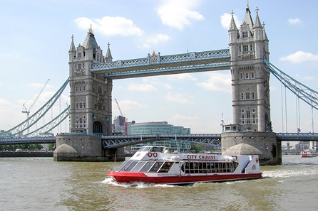 Family Thames Cruise Sightseeing River Red Rover Ticket