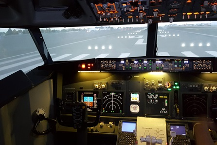 Flight Simulator Experience Aboard a Boeing 737 - 20 minutes