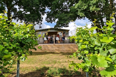 Tour and Wine Tasting for Two at Trotton Estate Vineyards