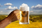 Sadler's Ales Brew a Beer Day Experience for One