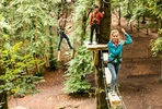 Full High Ropes Treetop Zip Trek and Nets Experience