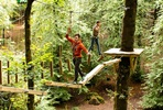 Full High Ropes Treetop Zip Trek and Nets Experience for Two